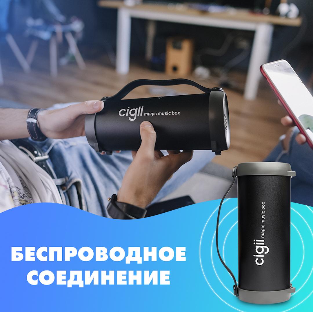 Беспроводная колонка Cigii S33D